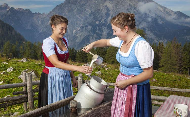 Bergbauernmilch Auf Der Alm