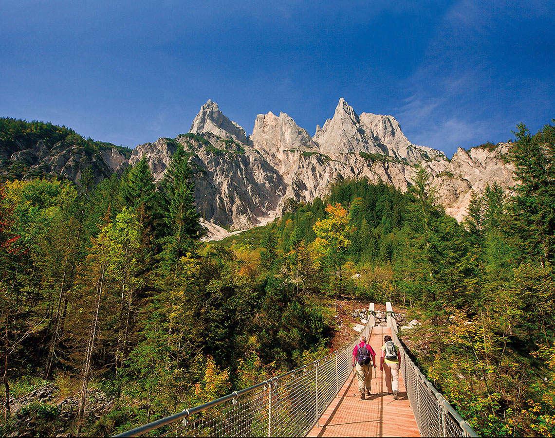 Haengebruecke Im Klausbachtal Nationalpark 1