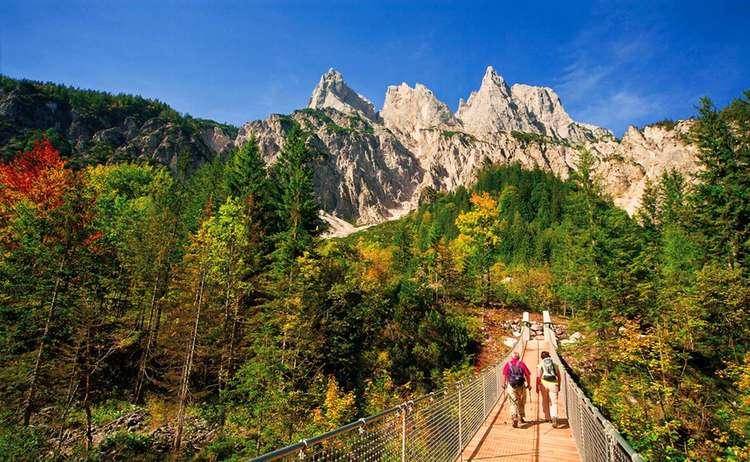 Haengebruecke Im Klausbachtal Nationalpark