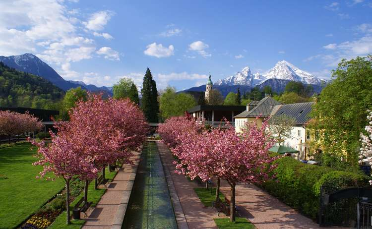 Kirschblüte im Kurgarten Berchtesgaden