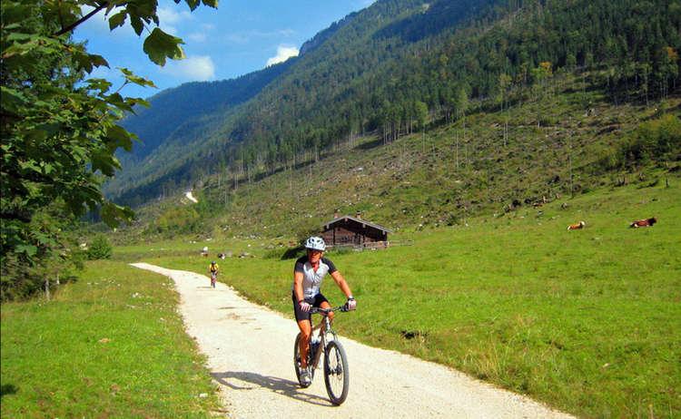Mit Dem Mountainbike Auf Der Schwarzbachalm