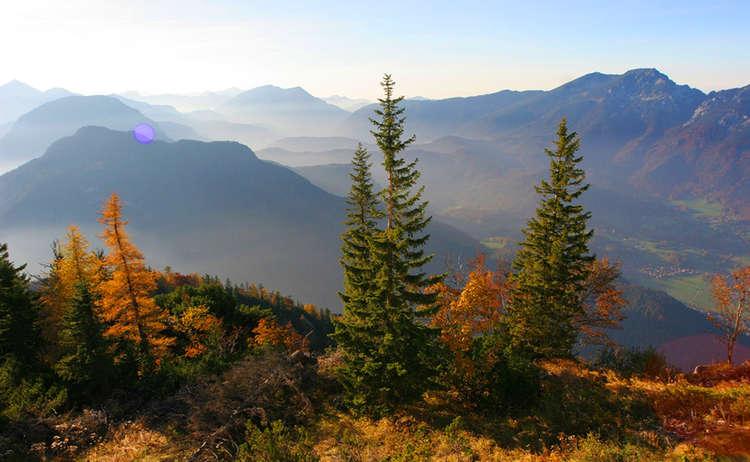 Predigtstuhl Im Herbst