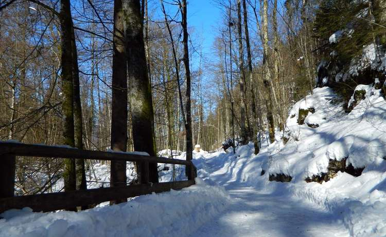 Winterw Wandern Koenigssee