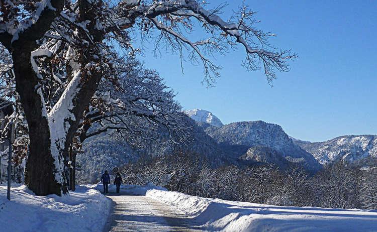 Winterwandern Bayerisch Gmain Alpenstadt Bad Reichenhall