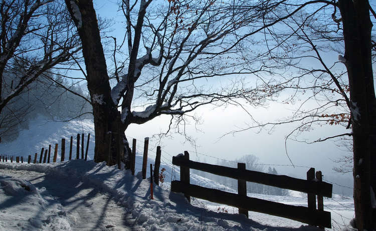Winterwandern Soleleitung Ramsau Bergsteigerdorf